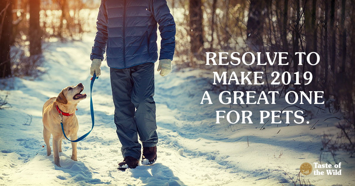 Resolve to Make 2019 a Great One for Pets | Taste of the Wild