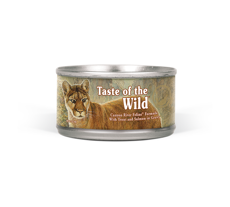 Canyon River Feline Formula with Trout and Salmon in Gravy can front