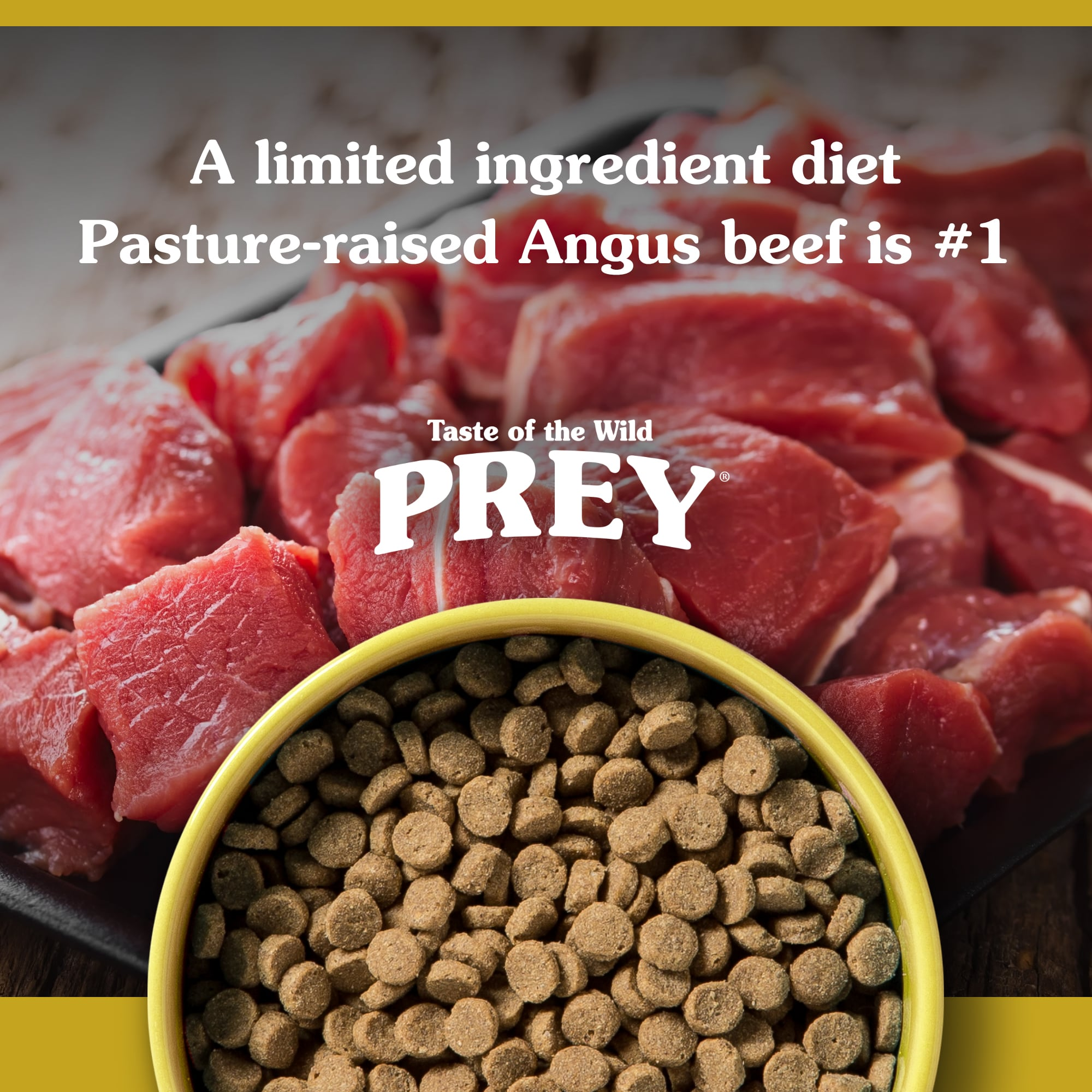 PREY Angus Beef for cats kibble in a yellow bowl | Taste of the Wild