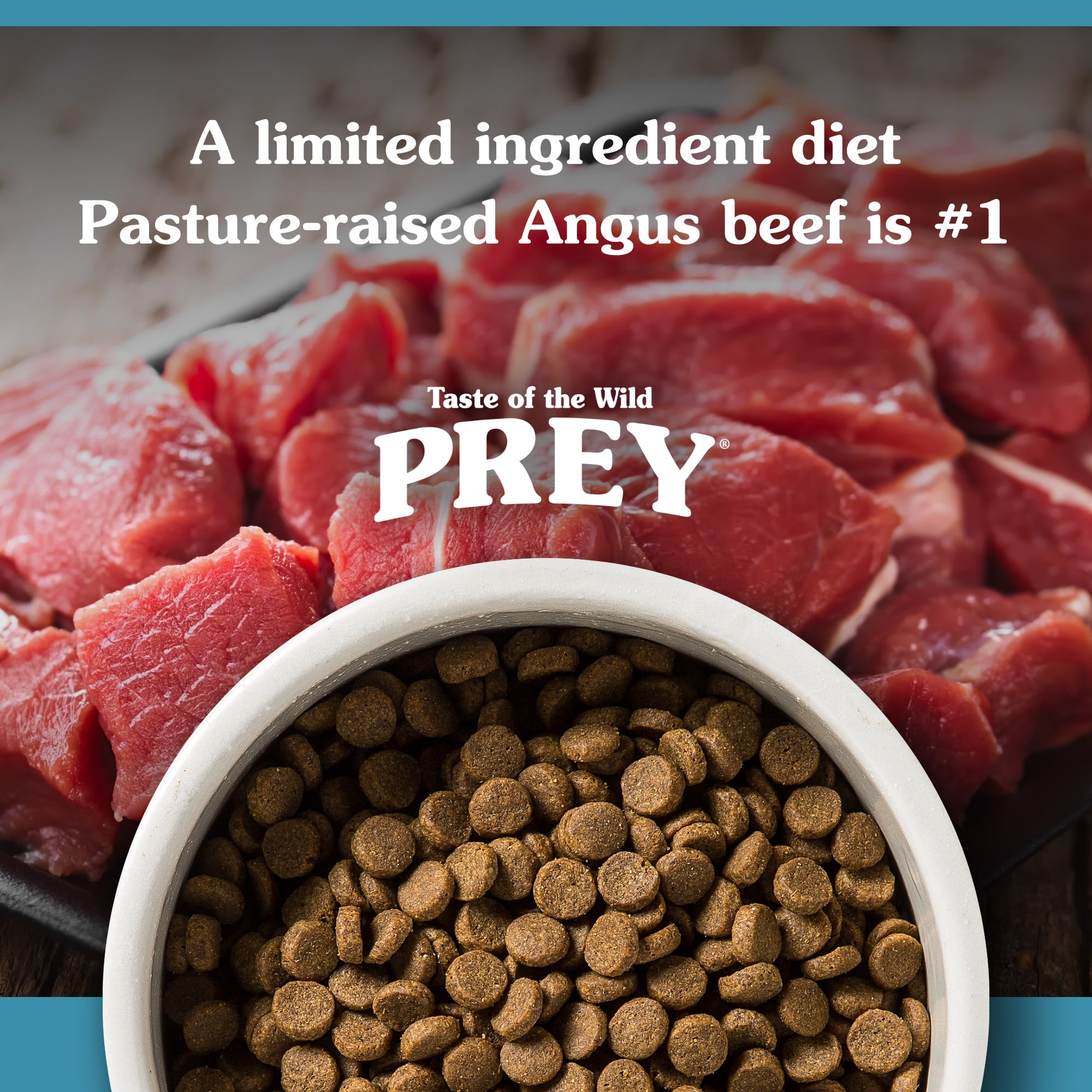 Angus Beef Recipe for Dogs kibble in a white bowl | Taste of the Wild